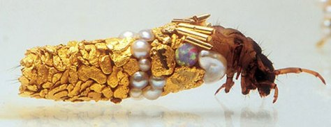 Caddisfly-Larvae-Sculptured-Jewelry-Art-by-French-Artist-Hubert-Duprat-6