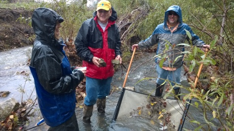 ST 463 Dardenne Day 10-12-14-A little rain doesn't stop us!